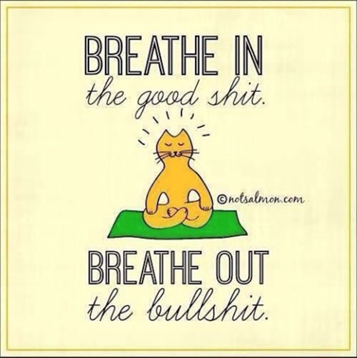 meditate_shit